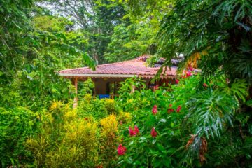 Best Yoga Retreat in Costa Rica