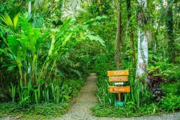 Eco Tourism Tips