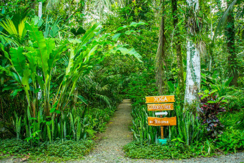 Things to do in Cahuita